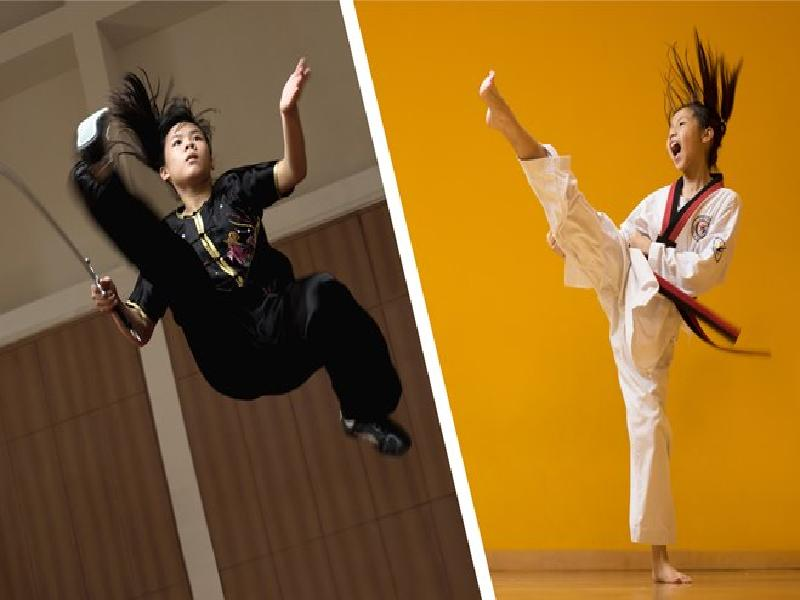 FACE-OFF: Wushu vs Taekwondo